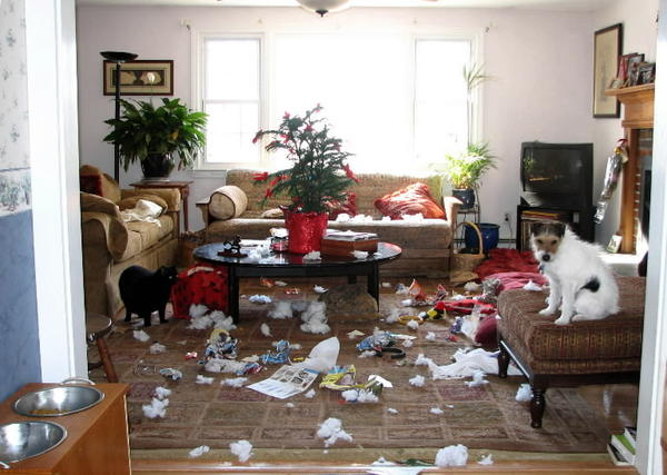destroyinghouse
