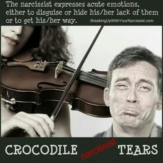 crocodiletears