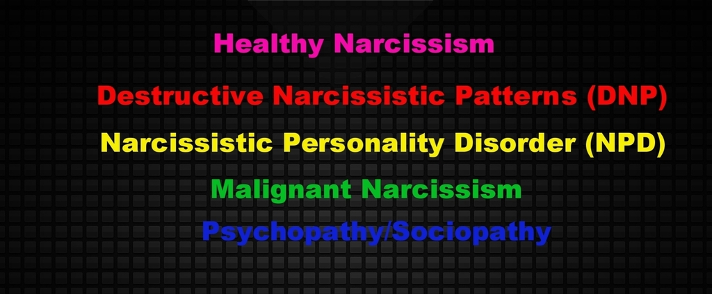 Not every narcissist has NPD  | Lucky Otters Haven