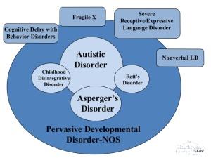 pervasive_developmental_disorders