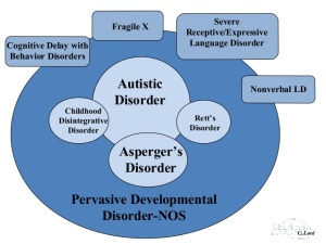 pervasive_developmental_disorders