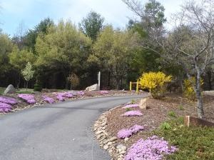spring4_5_6