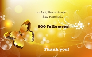 900_followers