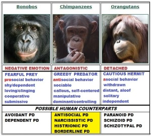 Primates_chimps