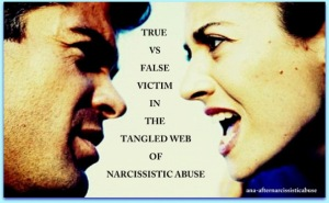 victim_abuser