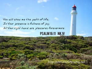 Psalm 16 v 11 path of life bible verses on happiness