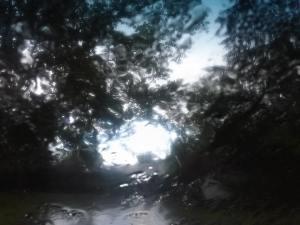 rainy_stuff2