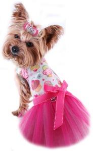 dog_dress