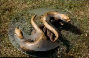 otter table ying yang