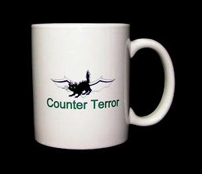 30counter-terror
