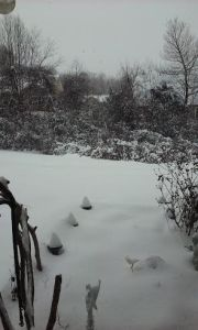 snow_122_5