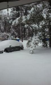 snow_122_6