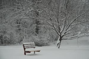 snow_bench