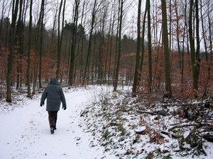 snowwalking
