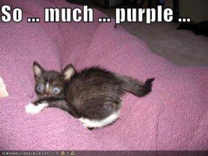 so-muich-purple