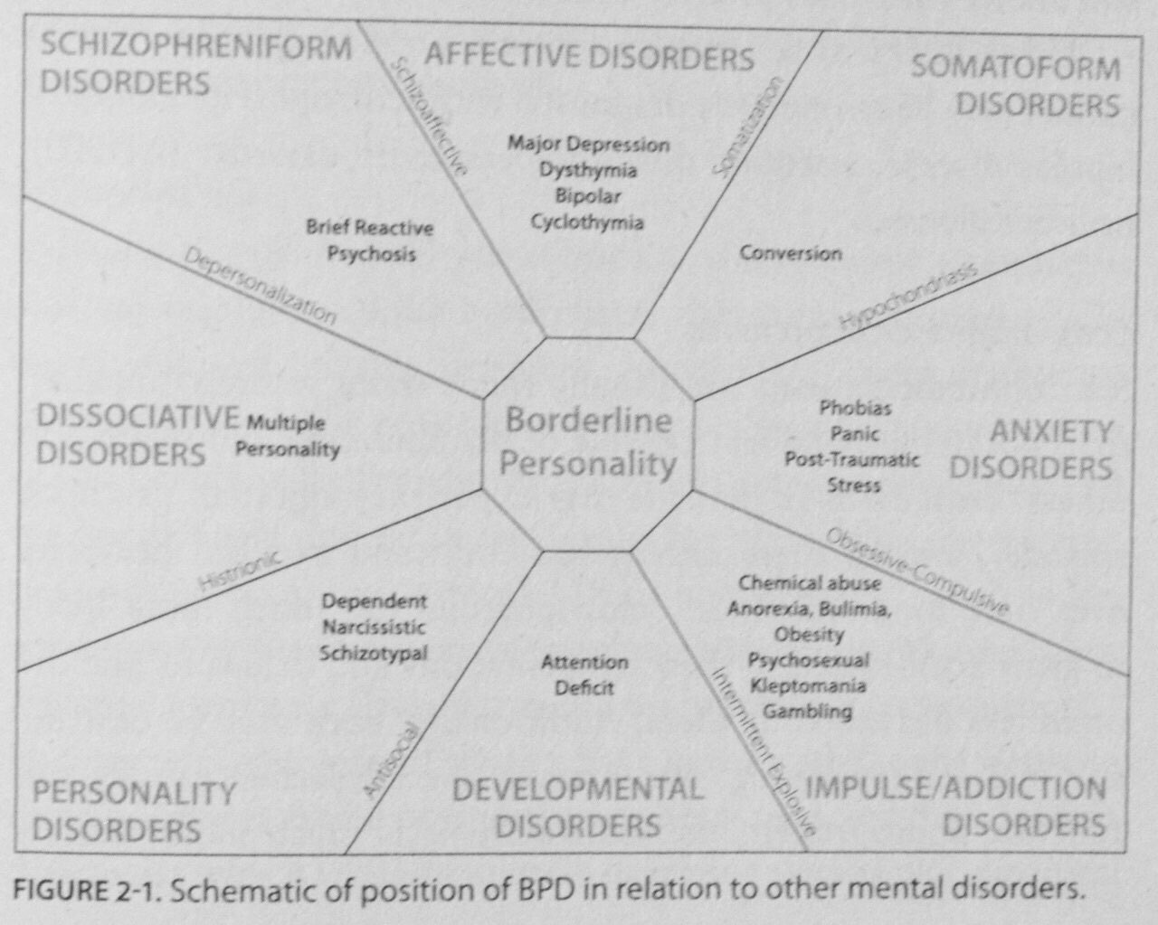 BPD: The fulcrum of mental illness. | Lucky Otters Haven A Schematic Diagram Bpd on
