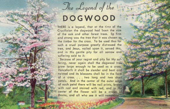 dogwood_legend