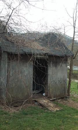 abandoned_shed2