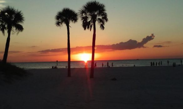 clearwater5