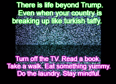 lifebeyondtrump