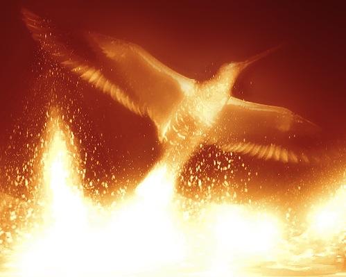 bigstock-Phoenix-56031092