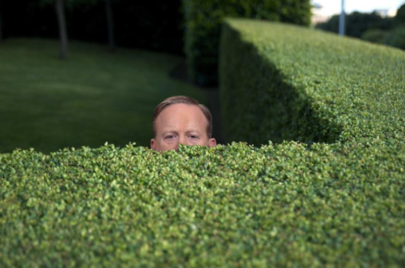 spicerinthebushes
