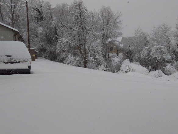 snow1209b