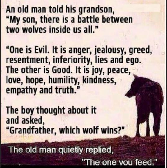 battleoftwowolves
